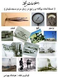 دانلود کتاب اصطلاحات بیگانه در زبان مردم مسجد سلیمان