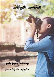 دانلود کتاب عکاسی خیابانی: راهنمای جامع