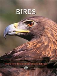دانلود کتاب دایرة المعارف مصور بریتانیکا: پرندگان