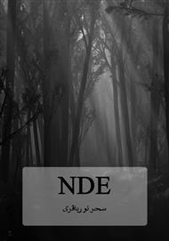 دانلود کتاب رمان NDE