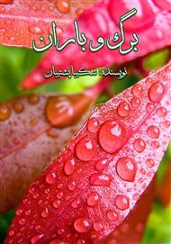 دانلود کتاب رمان برگ و باران