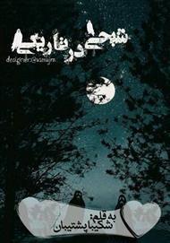 دانلود کتاب رمان شبحی در تاریکی
