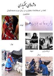 دانلود کتاب واژه های بختیاری در زبان مردم مسجد سلیمان - جلد 2