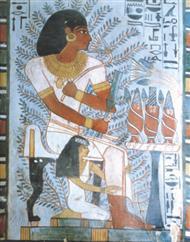 دانلود کتاب باغ سنوفر - از باغ های معروف مصری