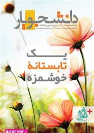 دانلود ماهنامه تخصصی کامپیوتر و فناوری اطلاعات دانشجویار - شماره 6