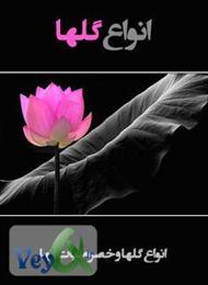 دانلود کتاب معرفی انواع گلها و خصوصیات آنها