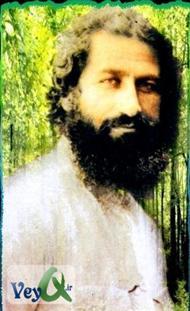 دانلود کتاب زندگینامه میرزا کوچک خان (سردار جنگل)