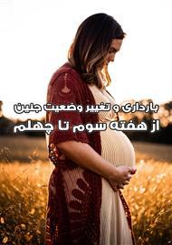 دانلود کتاب بارداری و تغییر وضعیت جنین از هفته سوم تا چهلم