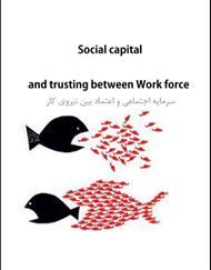 دانلود کتاب سرمایه اجتماعی و اعتماد بین نیروی کار