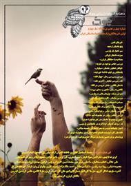 دانلود ماهنامه ادبیات داستانی چوک - شماره 47