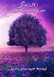 دانلود کتاب زلال زندگی: سیری در سیره نبوی
