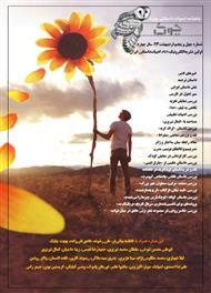 دانلود ماهنامه ادبیات داستانی چوک - شماره 45
