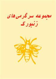 دانلود کتاب مجموعه سرگرمیهای زنبورک