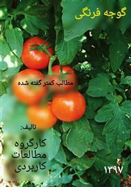 دانلود کتاب گوجه فرنگی، مطالب کمتر گفته شده