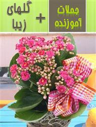 دانلود کتاب گلهای زیبا + جملات آموزنده