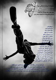 دانلود ماهنامه ادبیات داستانی چوک - شماره 41